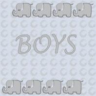 Boys/Unisex PDF